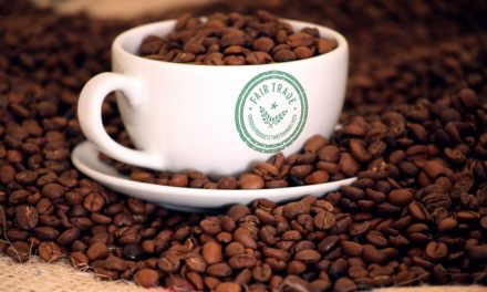 Our Favourite Ethical Coffee Companies